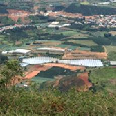 ダラット農場遠景